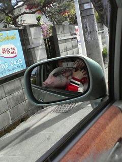 世界の?!車窓から♪